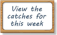 Ythan Salmon and Sea Trout Fishery - View the catches for this week